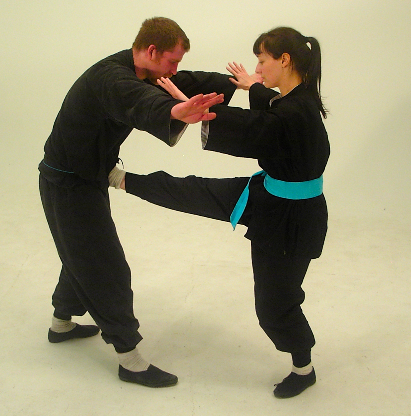 Internal Taoist Martial - Self-Defence Art