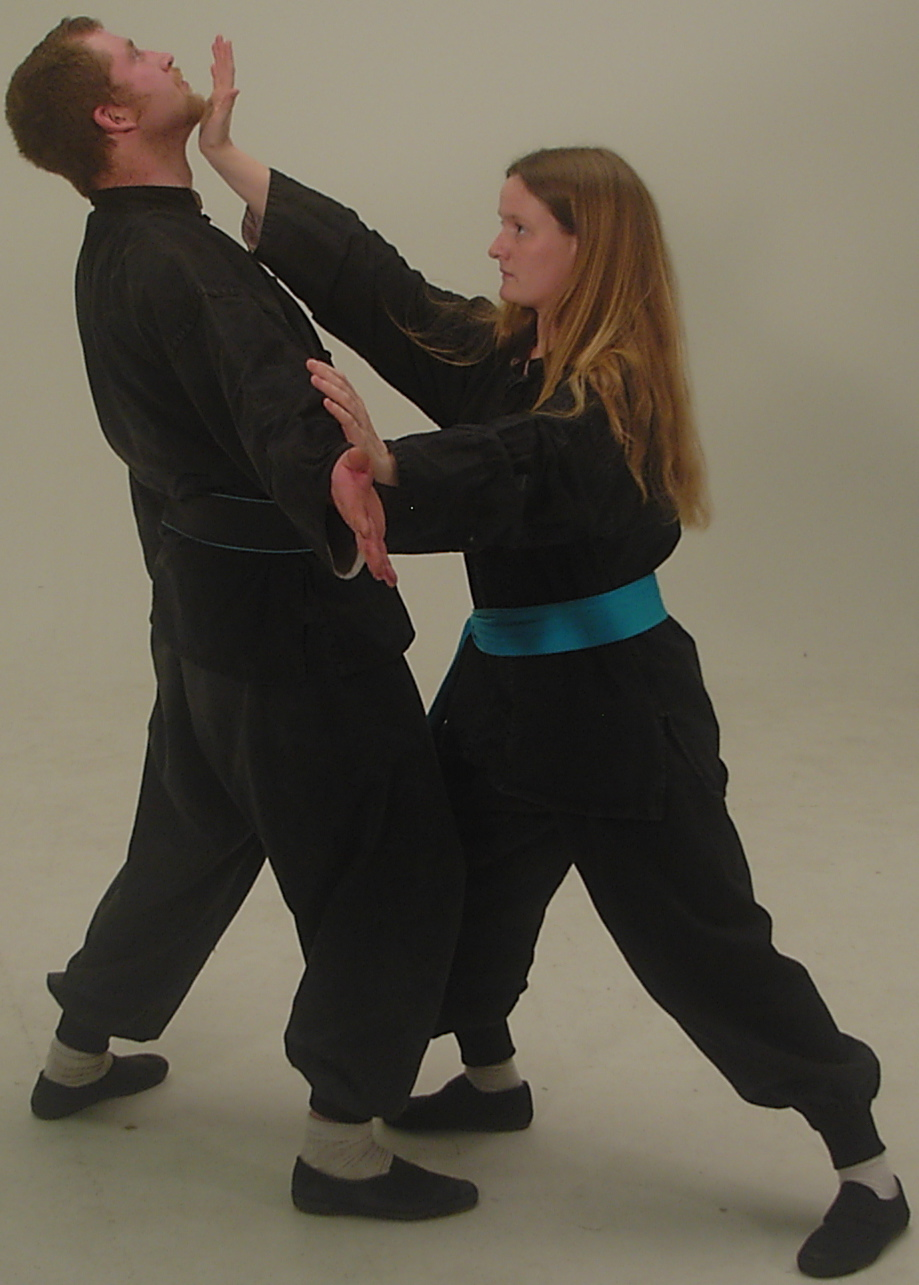 Feng Shou Chuan Shu | Taoist Martial - Self-Defence Arts