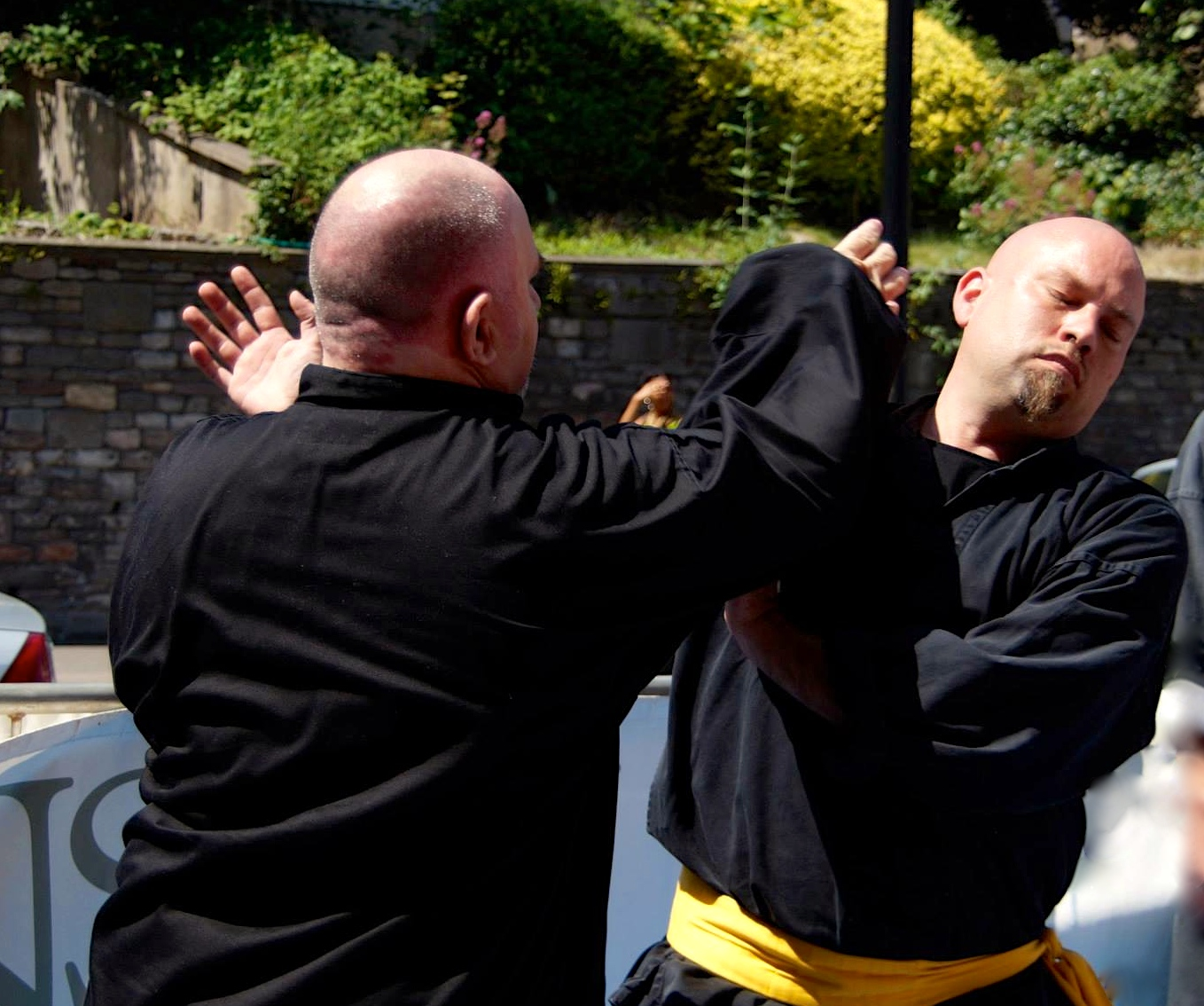 Harmony Palm (Tai Chi) Martial – Self-Defence